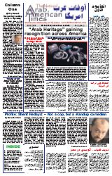 Arab American View Newspaper front Cover 2007