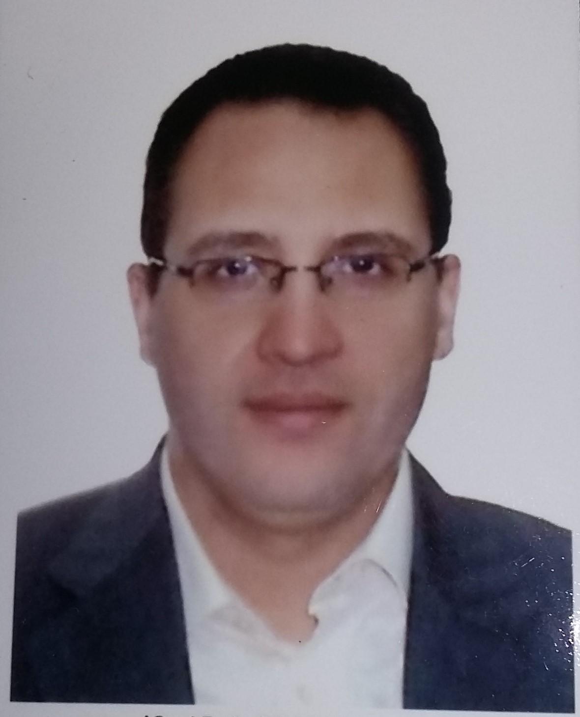 Atef A. Hassan